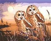 Owls by Moonlight - Grafitec Tapestry Canvas