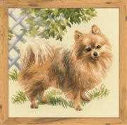 RIOLIS Pomeranian Cross Stitch Kit