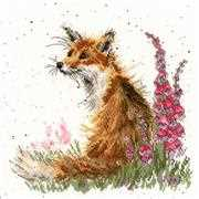Bothy Threads Amongst the Foxgloves Cross Stitch Kit