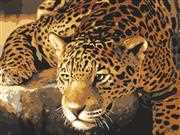 Jaguar Prowl - Grafitec Tapestry Canvas