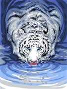White Tiger Drinking - Grafitec Tapestry Canvas