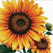 Needleart World Sunflower No Count Cross Stitch Kit