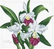 Bouquet of Orchids - Needleart World No Count Cross Stitch Kit