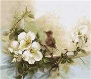 Luca-S Birdie - Aida Cross Stitch Kit