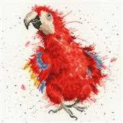 Parrots on Parade - Bothy Threads Cross Stitch Kit