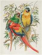 Parrots - Eva Rosenstand Cross Stitch Kit