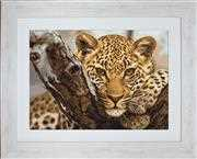 Luca-S Leopard - Petit Point Tapestry Kit