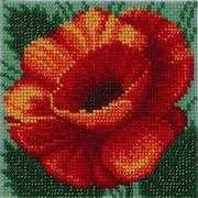 VDV Red Poppy Embroidery Kit