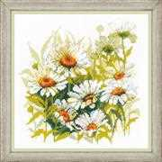 Chamomiles - RIOLIS Cross Stitch Kit