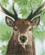 Lanarte Proud Red Deer Cross Stitch Kit