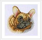 Merejka French Bulldog Cross Stitch Kit