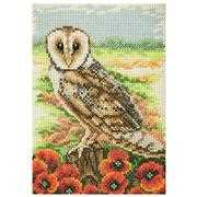 Owl - Anchor Cross Stitch Kit