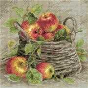 RIOLIS Ripe Apples Craft Kit