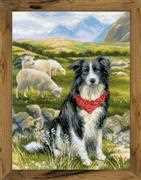 RIOLIS Border Collie Cross Stitch Kit
