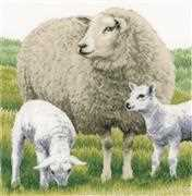 Lanarte Sheep - Aida Cross Stitch Kit