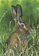 Heritage Hare - Evenweave Cross Stitch Kit