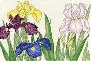 Bothy Threads Iris Blooms Cross Stitch Kit