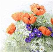 Luca-S Poppies Cross Stitch Kit