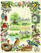 Anchor Birds Cross Stitch Kit