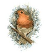 Robin Redbreast - Evenweave - Heritage Cross Stitch Kit