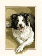 Border Collie - Evenweave - Heritage Cross Stitch Kit